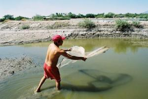 a shrimp farmer casting his net