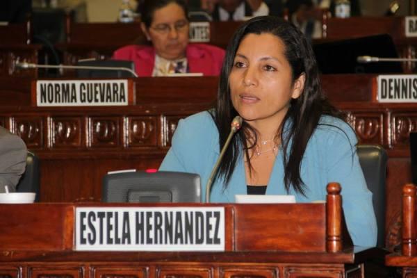 Congresswoman and Community leader, Estela Hernández